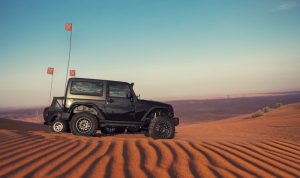 4wd-Safety-whip-sand-flag-beach-desert-fsp